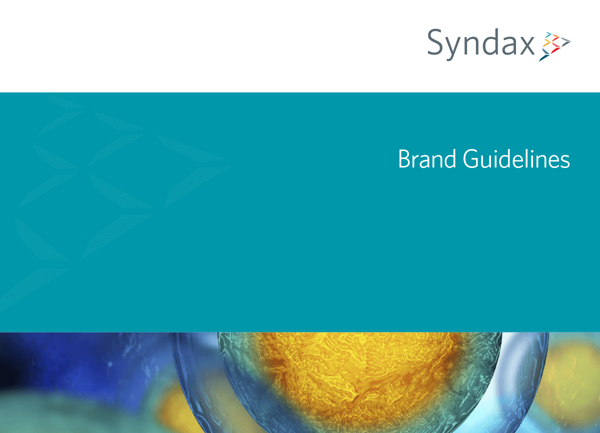 Syndax brand style guide cover
