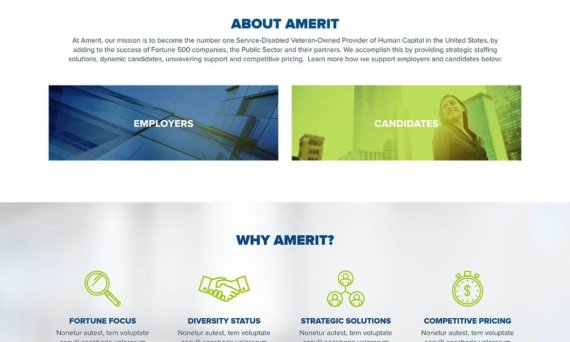 Read more about Amerit Consulting
