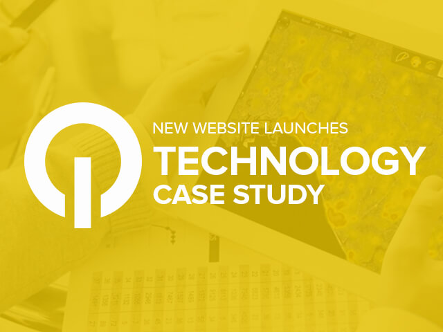 case study websites