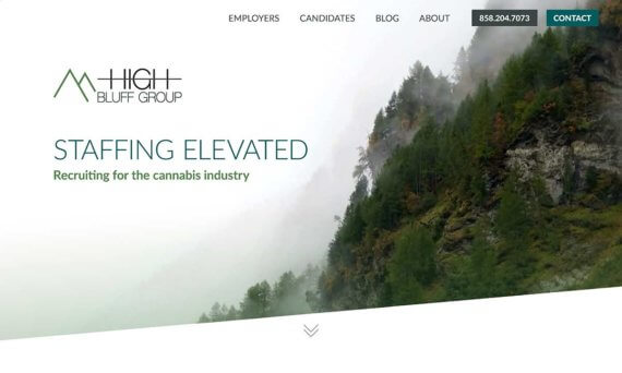 Read more about High Bluff Group